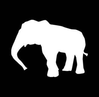 Decorative image. Vectorized profile of an elephant. White silhouette over black backgorund